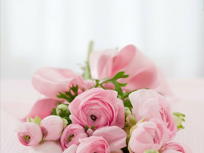 Roses142876_1280